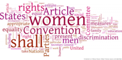 300px-Wordle_Visualization_of_CEDAW-1.png